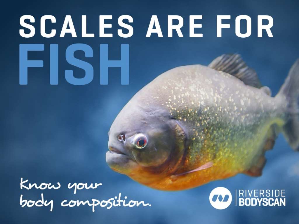 Scales-are-for-fish